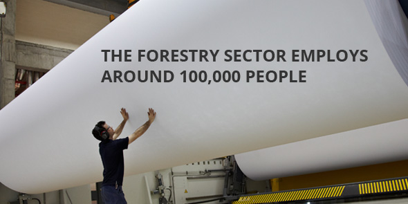 The forestry sector employs around 100.000 people